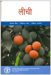 Cover photo of लीची